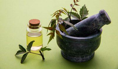 """""""המקור"""" רפואה מקורית - אנושית, יעילה ואינה מזיקה."""